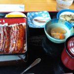 父の日に ウナギ 食べに行ったよ