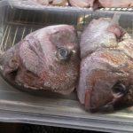 鯛のアラ煮のブームがやってくる?